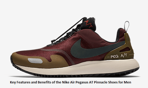 87fbc4ba0 Key-Features-and-Benefits-of-the-Nike-Air-Pegasus-AT-Pinnacle-Shoes -for-Men.png