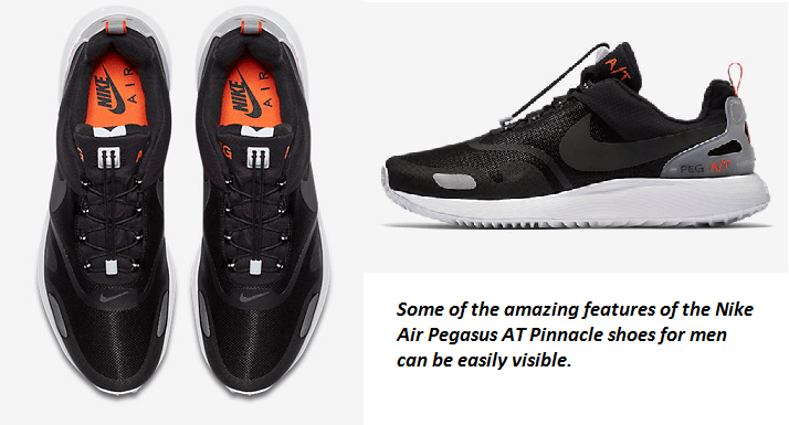 4e984405798c Key Features and Benefits of the Nike Air Pegasus AT Pinnacle Shoes for Men